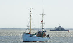 Fishing boat tours from Esbjerg